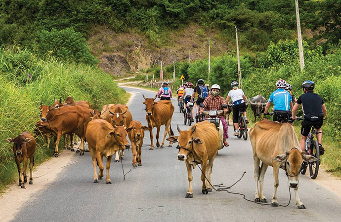 Hanoi to Luang Prabang by bike 14 Days